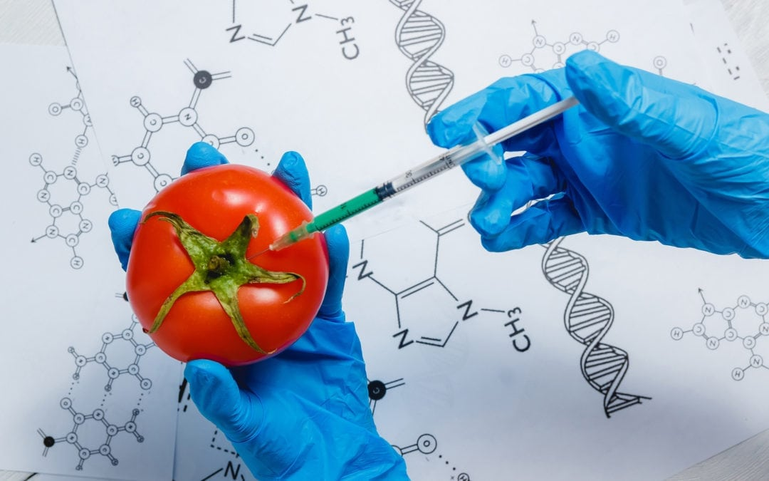 Our Food Future – Plant-based Food Only?